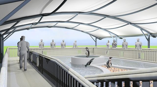 bazének, tučňáci, střecha, lidé